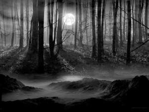 Clan Wars - Темный лес